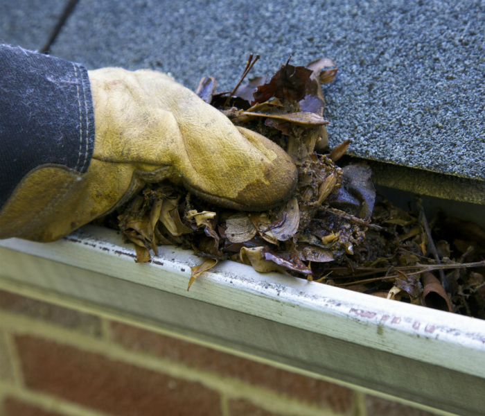 Water Damage The Importance of Cleaning Your Gutters in the Fall
