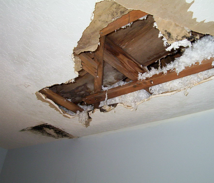 Water Damage Westland SERVPRO is Faster to Any Water Damage Event