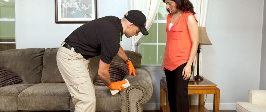 Westland, MI carpet upholstery cleaning