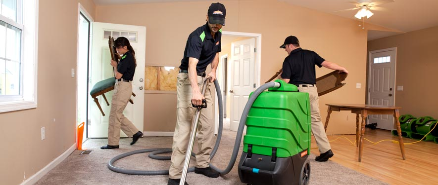 Westland, MI cleaning services